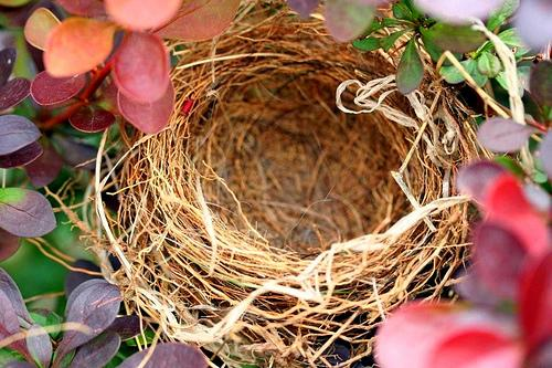 Dealing with the empty nest syndrome is a thing of the past