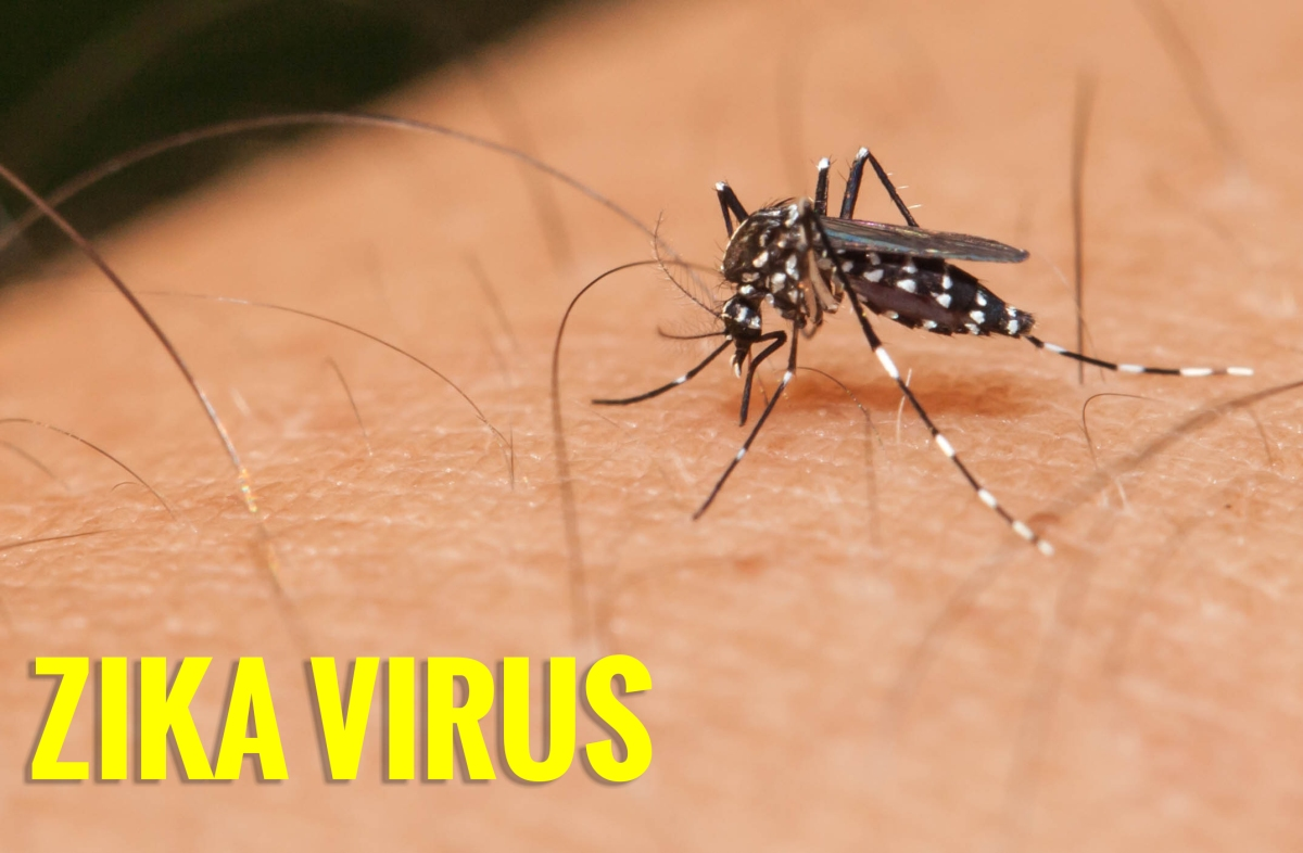 Zika Virus, and what you need toknow